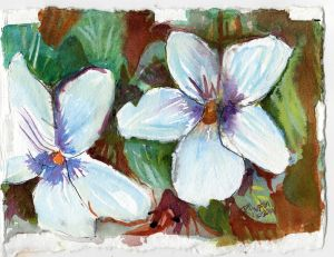 Birdsfoot Violet var. alba 5x7, watercolor on 300lb coldpress