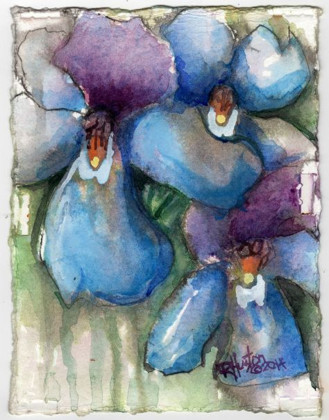 Birdsfoot Violet 5x7, watercolor on 300lb coldpress paper