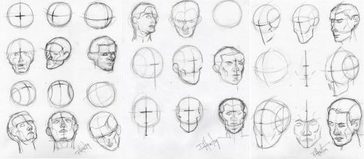 Head Drawing Exercises 1, 2,and 3 25.5x11, graphite