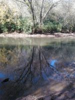 Reflections in the iddleOconee River