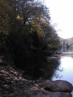Reflections in the Middle Oconee River