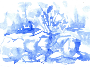03.ultramarine 7x5, watercolor