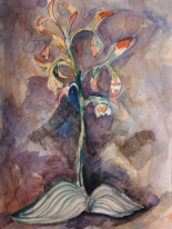 orchid 01 Puttyroot ...Aplectrum hyemale 11x15, watercolor and graphite