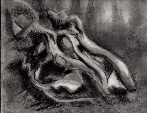 Blown down 01 12x9, charcoal