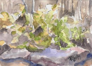 noname 06 ...river cane and rocks 7x5, mixed media (watercolor and charcoal)