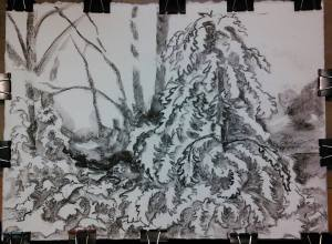 ice storm 03 drawing 11x15, charcoal on 140lb Arches coldpress