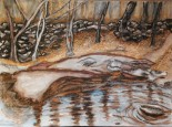 noname creek 11 ...shoals, strand, reflections 15x11, watercolor and charcoal on 140lb Canson coldpress