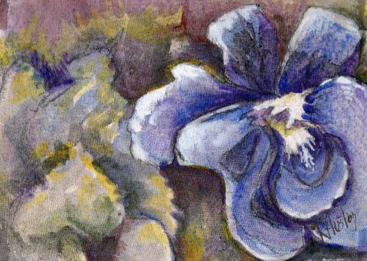 Violet 04 (Viola sororia) 5x7, acrylic and charcoal on muslin