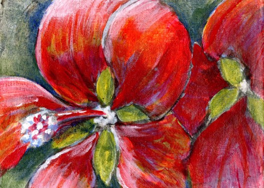 Swamp Hibiscus 02 ...(Hibiscus coccineus) 7x5, acrylic and charcoal on muslin