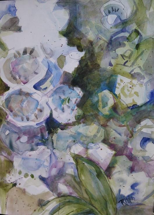 Mountain Laurel 01 11x14, watercolor on 98lb paper