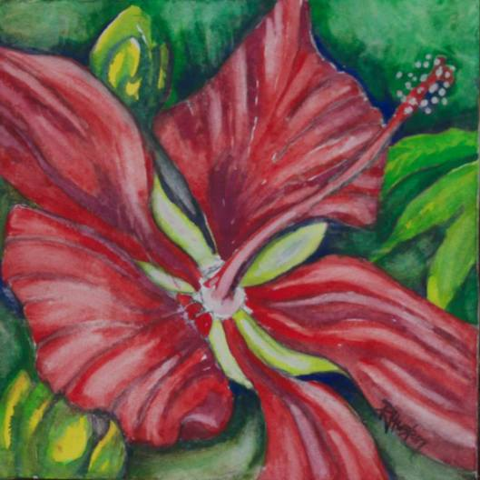 Botanical Garden 09... Swamp Hibiscus (Hibiscus coccineus) 10x10, mixed media (watercolor and charcoal)