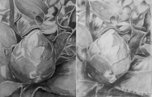 Botanical Garden 30 (value comparison) the painting and value study together