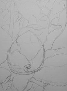 Botanical Garden 30_a 9x12, graphite (original sketch)