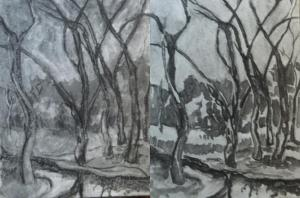 Botanical Garden 35... beaver pond in winter steps one and two 9x12, charcoal