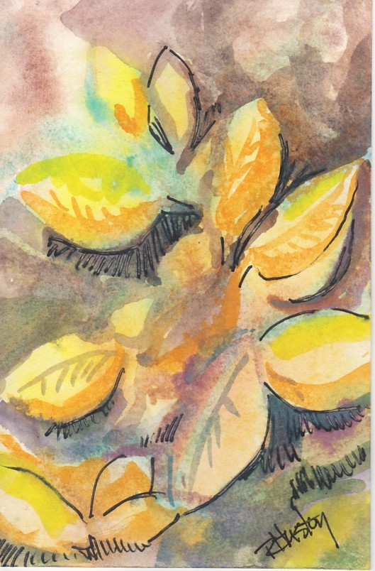 Botanical Garden 26... Sunshine Anise 4x6, mixed media (watercolor and ink)